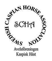 Swedish Caspian Horse Association - Avelsföreningen Kaspisk Häst