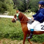 Darkhorse Shimari