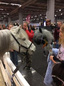 Euro_Horse 6