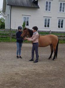 Ateshé Larsson-Firouz talar om huvudets form. Häst: Soraya. Foto: L. Carrasco.