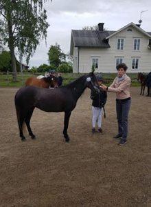 Ateshé Larsson-Firouz visar hur huvudet ska smalna av ner mot mulen. Häst: Ann´s Sweet Zafirah.