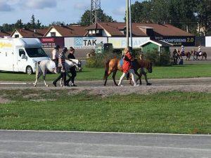 Ann's Zamiro och MCC Tabriz's Sham var även med på ponnyridningen som annordnades.